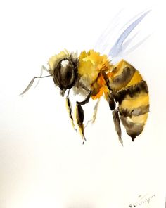Bee original watercolor painting 10 X 8 in bee art by ORIGINALONLY, $22.00 upstairs bathroom I have a similar print with a gold foil background only it's 8x8""
