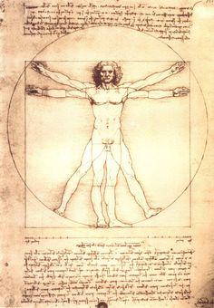 Vitruvian Man, Study of proportions, from Vitruvius's De Architectura - Leonardo Da Vinci -