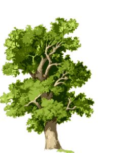 gif arbre