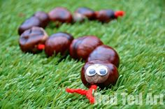 """Lovely school craft. Materials virtually free. Tactile and fun and you can practice counting or """"sorting"""" your chestnuts by size."""
