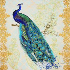 Jean Plout 'Beautiful Peacock' Canvas Art - 35 x 35 Peacock Canvas, Peacock Painting, Peacock Drawing, Peacock Decor, Peacock Art, Peacock Room, Peacock Shoes, Peacock Images, Peacock Pictures