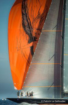 Sailing www.maxprop.it