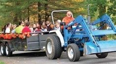 Harvest Festival Weekend Stamford, Connecticut  #Kids #Events