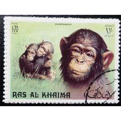 Ras al-Khaima, Wild Life, Primates, 1.70 Riyal 1972 used