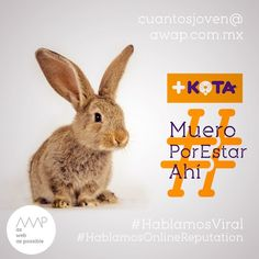 """Mejor no pido zanahorias""  Idea creativa @davichobandazza Copy's @reneanzorena @tahusin @davichobandazza Artes @reneanzorena Agencia: awap.com.mx  #maskota #maskotastore #maskotamaltrataanimales #maskotamata  #HablamosDigital #HablamosViral #HablamosDiseño #HablamosCliente  #creative #true #awappers #digitalmarketing #digitalagency #mexico #df #designPorn #AWAP #html #css #responsivo #OnlineReputation #marketingdigital #agenciadigital"