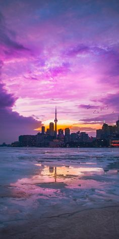 Polson Pier Toronto Canada iPhone X Wallpapers Flowers Wallpaper, Nature Wallpaper, Wallpaper Backgrounds, Wallpaper Desktop, Cityscape Wallpaper, City Wallpaper, Toronto Pictures, Beautiful Wallpaper Hd, Hd Sky