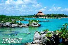 Xel ha!! a few hours outside Cancun Mexico, pretty close to Playa del Carmen. This place was amazing.