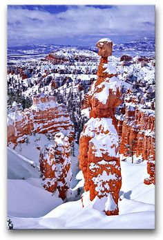 Snowed in,Bryce Canyon National Park Been here, a fab photo Bryce Canyon, Top Of The World, Wonders Of The World, Utah Parks, Winter Szenen, Beautiful Winter Scenes, Snow Scenes, Winter Wonder, Weird World