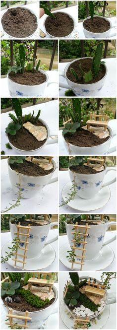 How to make a small cup garden Jardin Miniature Mini Fairy Garden, Miniature Fairy Gardens, Garden Crafts, Planting Succulents, Garden Pots, Indoor Plants, Garden Design, Gardening, Nagoya