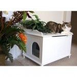 Does this not look a lot better than the old fashion cat litter boxes?