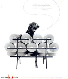 Nelson Marshmallow Sofa and the Dog, 1956