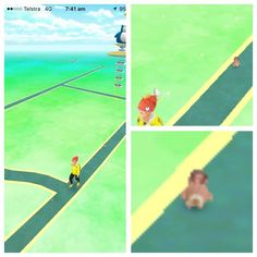Game glitched after tapping on sentret and a mini sentret appeared