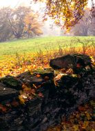 Scenic Cotswolds - Autumn Autumn, Painting, Art, Art Background, Fall, Painting Art, Kunst, Gcse Art, Paintings