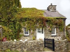 Comfy Cozy Cottage