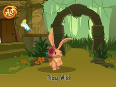 find this pin and more on animal jam picture