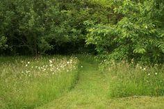 Les prairies offrent nourriture et abri à de nombreux insectes (c) Denis Pépin, lauréat du concours Jardiner Autrement 2012