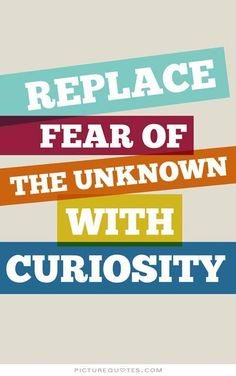 Curiosity Quotes Curiosity Quotes #88279 Quotes  Colorful Pictures  Stuff