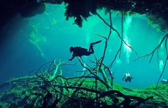 Cave Diving | Blue Hole at Lighthouse Reef, Belize