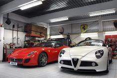 Pair of Italian stallions, which would you choose?  [Maybe…