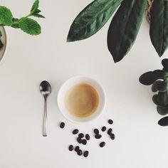 Urban Jungle Bloggers: Plants & Coffee via @jtdesignNL