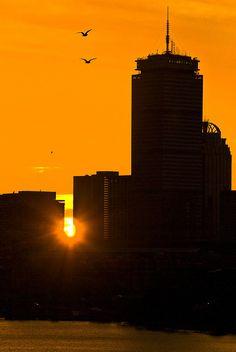 See the Sun Rise over Boston (check Boston Common, In Boston, Boston Proper, Sun Dawn, Boston Skyline, See The Sun, Boston Strong, Skyline Art, My Kind Of Town