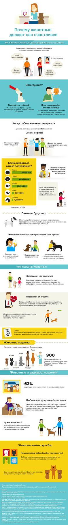 Почему животные делают нас счастливее (инфографика) #кошки #собаки #животные #счастье #инфографика