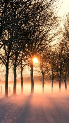 into the sun, late or early, fog. Pretty Pictures, Cool Photos, Perfect Day, Winter Magic, Winter Beauty, Beautiful Sunrise, Htc One, Samsung Galaxy S4, Winter Time