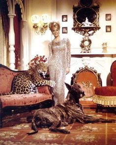 0 Yvette Mimieux and leopard and great dane Yvette Mimieux, Beautiful People, Beautiful Women, Teen Movies, Glamour Photo, Trendy Fashion, High Fashion, Almost Famous, Old Hollywood Glamour