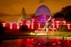 Syon Park is again illuminating the gardens and Great Conservatory for the 9th Annual Enchanted Woodland so wrap up warm and join us.  Open Fridays, Saturdays & Sundays only from Friday 21st November to Sunday 7th December. Open from 5.00pm to 9.00pm with last entry at 8.00pm. http://enchantedwoodland.com/