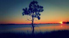 Grayton Beach - Scenic 30A Real Estate - GO TO THE BEACH Real Estate - Sunset @ Western Lake