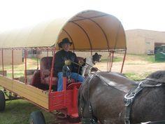 Xena and Baby pulling wagon with Sadie at shotgun.