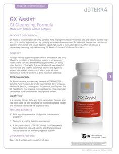 GX Assist page 1