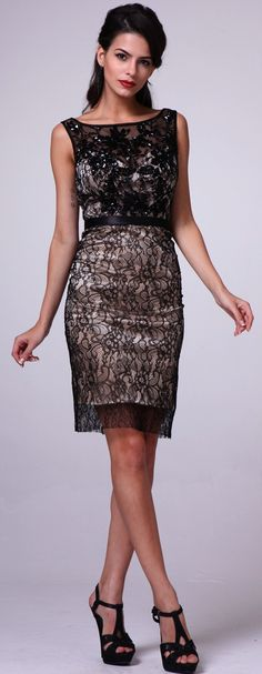 Evening Dresses Cocktail Dresses under $200<BR>addjc2362<BR>Soft lace dress with beading details the bodice to knee length A-line skirt.