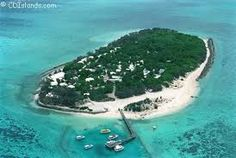 Australia - heron island' - Google Search