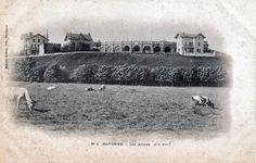 Pays Basque 1900: La carte postale de la semaine : le quartier Lachepaillet à Bayonne Louvre, Photos, Movie Posters, Movies, Travel, The Neighborhood, Basque Country, Cards, Pictures
