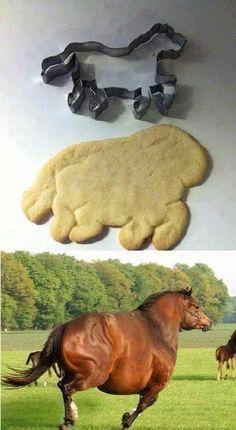 ideas for funny humor laughing so hard hilarious lol haha sad Animal Jokes, Funny Animal Memes, Funny Animals, Cute Animals, Sock Animals, Really Funny Memes, Stupid Funny Memes, Funny Relatable Memes, Funny Pins