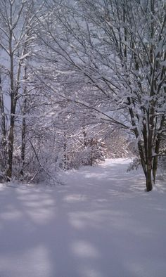 indiana winters ♥