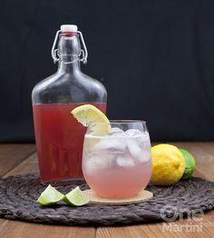 Rhubarb Shrub Cocktail - Rhubarb Shrub (Recipe), Gin, Soda Water, Lemon or Lime Wedge.