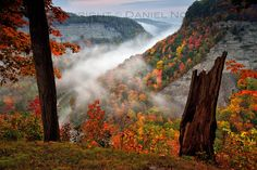 Fog over Genesee River at Dawn, Letchworth State Park: The Genesee River gorge at the Letchworth State Park always looks great, no matter what time of the year, time of the day, or weather. Autumn definitely offers the most colorful look, especially ...