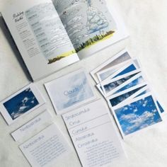 Learn about the 10 types of clouds with this montessori card learning set! Complete with real images, labels, and information cards. Montessori Activities, Learning Activities, Kids Learning, Living And Nonliving, Sequencing Cards, French For Beginners, Words Of Affirmation, Spring Activities