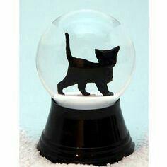 Black cat snow globe