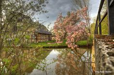 #Naturerlebnis im #Spreewald