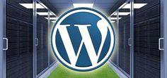 Menentukan Web Hosting Yang Handal buka info