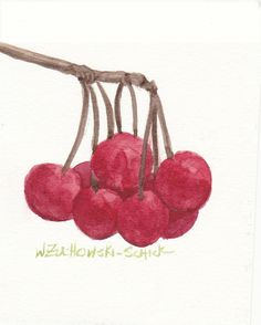 Red Cherries Original Watercolor by wandazuchowskischick on Etsy