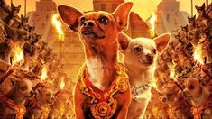 beverly_hills_chihuahua_aztec_warrior