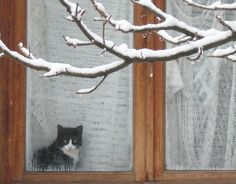 winter ......