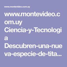www.montevideo.com.uy Ciencia-y-Tecnologia Descubren-una-nueva-especie-de-titanosaurio-que-vivio-en-Siberia-uc672201?plantilla=1685
