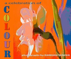 Click to preview a celebration of COLOUR photo book