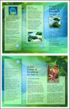 Brochure: The Hubbard Foundation