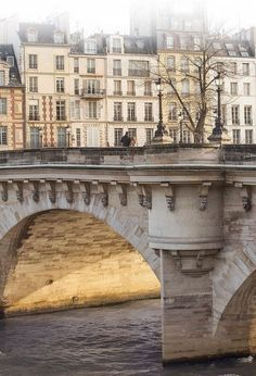 January morning, Pont Neuf, Paris, France by Parisian Moments Photography